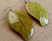 Mango Manga Leaves Coconut Big Statement Earrings Leaves Eco Friendly