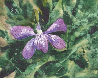 Rhode Island Violet, Watercolor Original, State Flower, Green, Purple