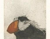 Tufted Puffin, Fine Art Etching of Sea Bird