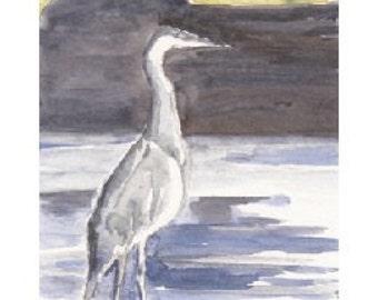 "Blue Heron Sketch, Print of Watercolor, 4"" x 6"""