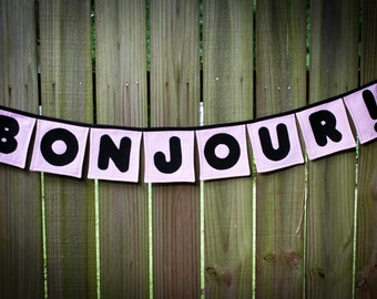Bonjour banner,French themed banner, French for hello, Hello banner, Bonjour , bonjour bunting, fancy nancy inspired, french theme party