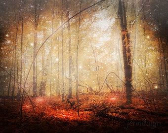 Fire Within - fine art photograph, autumn forest photography, red rustic woods, enchanted forest, fairy tale, woodland decor, surrealism