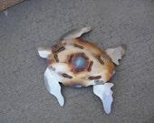 Sea Turtle Stainless Steel