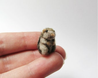 Tiny Jungar hamster