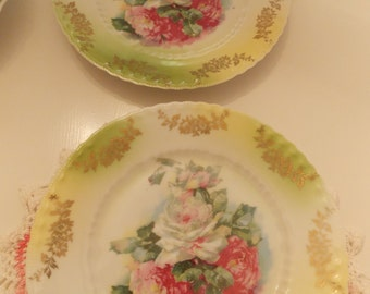 Pair of Antique Rose Plates