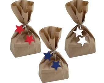 Party Favor Bags with Star Twist Ties, Treat Bags, 4th of July Party Decorations - No1094