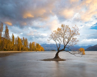 Wanaka Sunrise (Lake Wanaka, New Zealand)