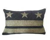 Washington DC Flag Pillow Cover - Charcoal Gray