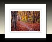 Autumn Path Matted Print, Fall themed landscape art, Rustic wall decor, Red, Yellow, Ready for framing or Framed