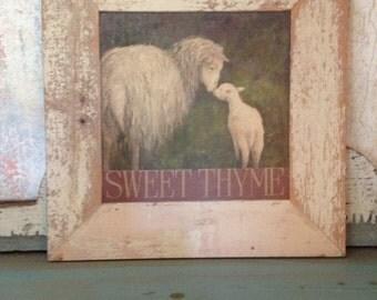 Sweet Thyme sheep and lamb print