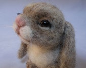 Bunny, Rabbit, Bunny rabbit, Needle felted, One of a Kind by Grannancan