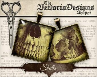Skulls - 1.5 inch square / 1 inch square / Scrabble Tile - VDSQHA0115