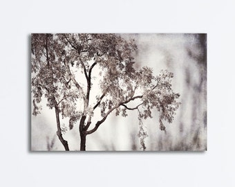 "Black and White Tree Canvas - nature wall art grey photography large gray gallery wrap modern picture botanical neutral wall art, ""Poetic"""