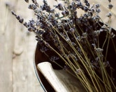 french country decor, lavender photograph, romantic art print, girly wall art, rustic wall decor, botanical art, bedroom art,fine art photo