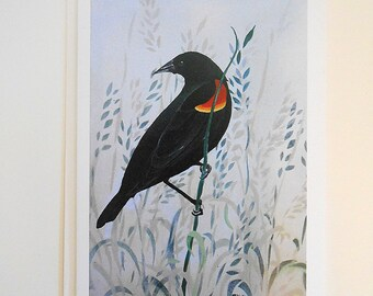 Red Winged Black Bird Blank Note Card