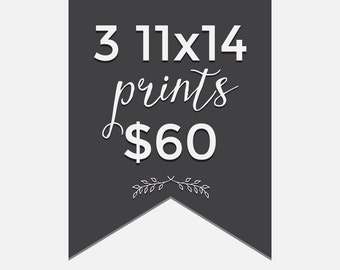 Pick any 3 prints - 3 piece 11x14 print bundle - Choose your prints - modern nature kitchen owl typography nursery photography illustration