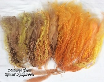 Mixed wool locks for Spinning, Waldorf Dolls, Art Dolls, Blythe re roots, needle felt and gnomes. Hand dyed 'Autumn Glow' colorway
