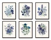 Fleurs de Jardin Print Set No. 6 - Botanical Print - Giclee Canvas Art Print - Antique Botanical Prints - Posters - Blue - Purple Flowers