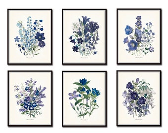 Fleurs de Jardin Print Set No. 6, Botanical Prints, Giclee,Art Print, Antique Botanical Prints, Illustration, Collage, Blue, Purple, Flowers