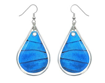 Real Butterfly Wing Sterling Silver Earrings - Blue Morpho Butterfly Wing Teardrop Sterling Silver