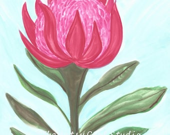 Protea flower - Art Print available in three sizes