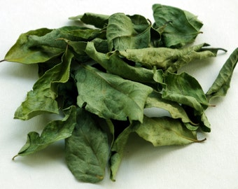 Curry Leaf, Organic