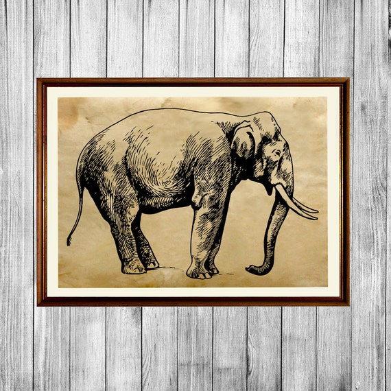 Elephant print african decor savanna animal poster by artkurka African elephant home decor