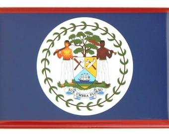 Flag of Belize Fridge Magnet