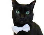 Cat Clothes Cat Collar Custom Satin Double Bow Tie Cat Collar to match your Wedding Colors pet clothing cat clothing pet clothes