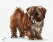 New Original Oil DOG Portrait Painting LHASA APSO Art Puppy Artist Signed Artwork