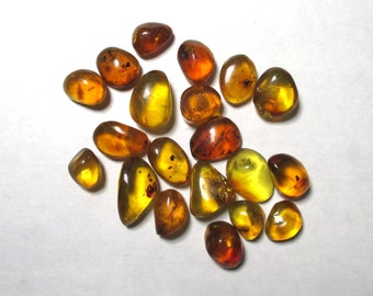 20 pieces of fossil Amber  from the Dominican Republic - 8 grams total - Natural , polished
