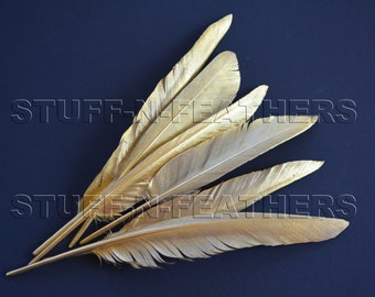 GOLD feathers metallic gold painted duck feathers loose for millinery, wedding party table decor, 6 pcs / 6-8 in (15-20 cm) long /F165-6G