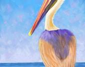 Pelican Painting, pelican prints, bird art, birds in art, birds in prints, sea birds, pelican art, pelican art prints, bird paintings