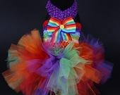 SUMMER:  Flower Pride Tutu Dog Dress