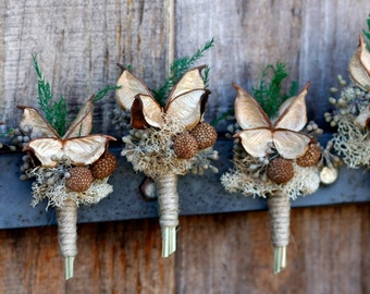 Set of five cotton burr Boutonnieres Rustic Boutonniere Jute Dried Pods Dried Eucalyptus Preserved Plumosa fern Magnet on back