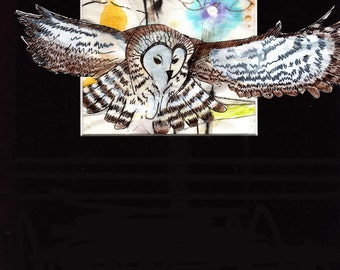 Decorative Owl In Flight -- Original Owl décor, mixed media owl wall art, animal art, owl home décor by Kim Northrop