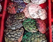 Dragon Scales SMALL Random Grab bag Made to order Collectible Replicas