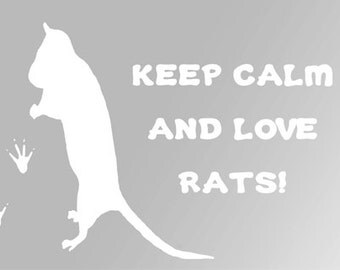 Keep Calm and Love Rats Decal