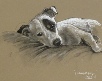 Jack Russell Terrier cute dog greetings card 'Looking at You' from an original charcoal and chalk sketch