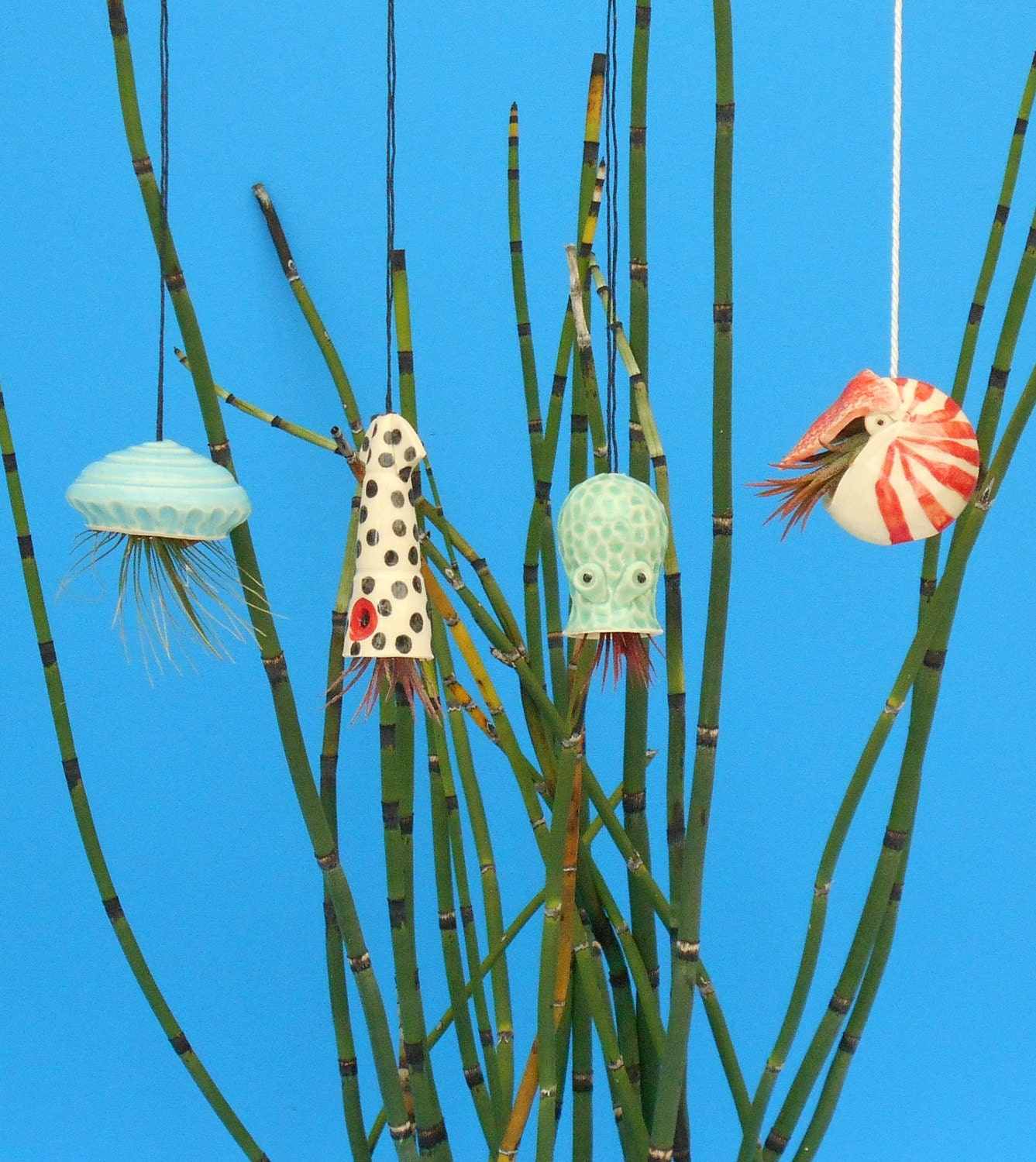 Mini Nautilus Hanging Air Planter Whimsical gift by ... - photo#50