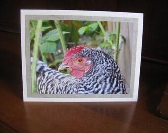 Favorite Hen Photo Greeting Card Set