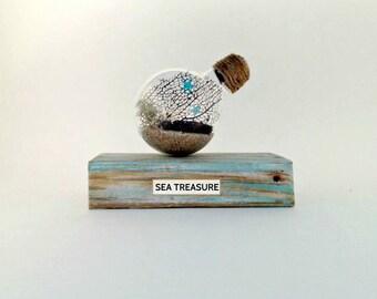 "Beach terrarium-Under the sea ""terrarium"" Sea fan in lightbulb on piece of driftwood recycled lightbulb desk decor -perfect summer gift"