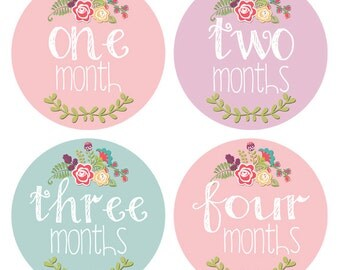 Baby Month Milestone Stickers Baby Girl Monthly Stickers Baby Accessories 1-12 Months Growth Stickers Newborn Photo Prop Floral BMST009