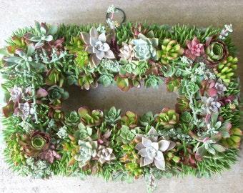 Succulent Wreath Rectangular 17 x 11 inch