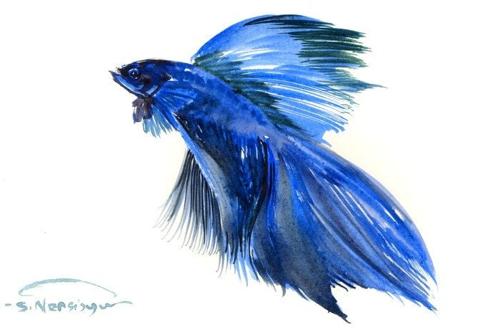 Betta fish original watercolor painting 9 x 6 inaquarium for Betta fish painting