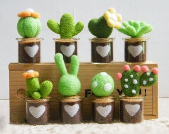 DIY trends: cactus and succulents
