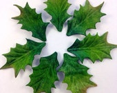 Holly Leaves vintage textured material Qty 7