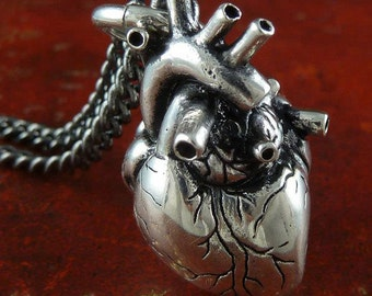 Anatomical 3D Human Heart necklace with chain