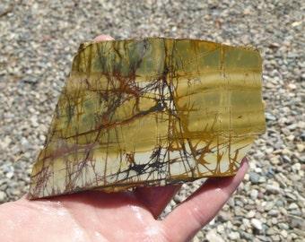Cherry Creek Jasper Slab  (100X75X8)