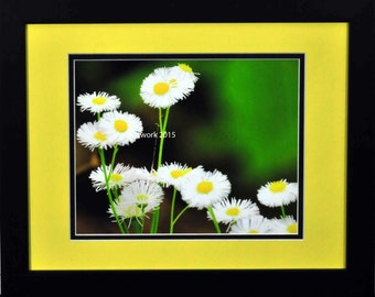 Ceci n'est pas une Marguerite Framed and Matted